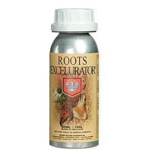 H&G Roots Excelurator 500ml