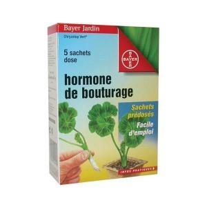 Bayer Hormone de Bouturage Poudre 25gr (5x5gr)