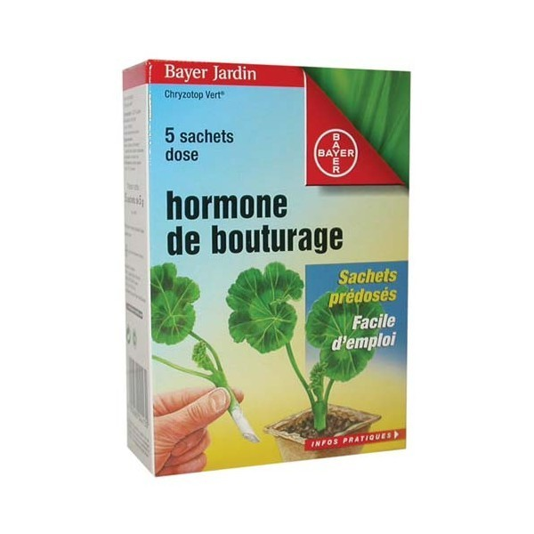 Bayer hormone de bouturage poudre 5x5gr - Hormone de bouturage ...