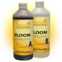 Ferro Floraison 1L (A+B)