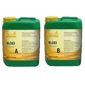Ferro - Floraison A + B - 10 L