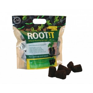 Rootit Rooting Sponges (50 bouchons)